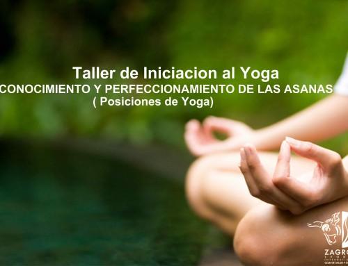 Taller Yoga. Iniciación y perfeccionamiento Asanas